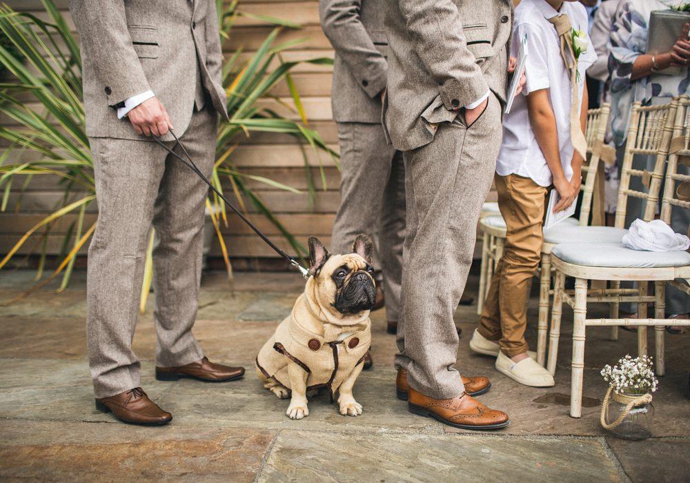 Newton Hall Dog in ceremony